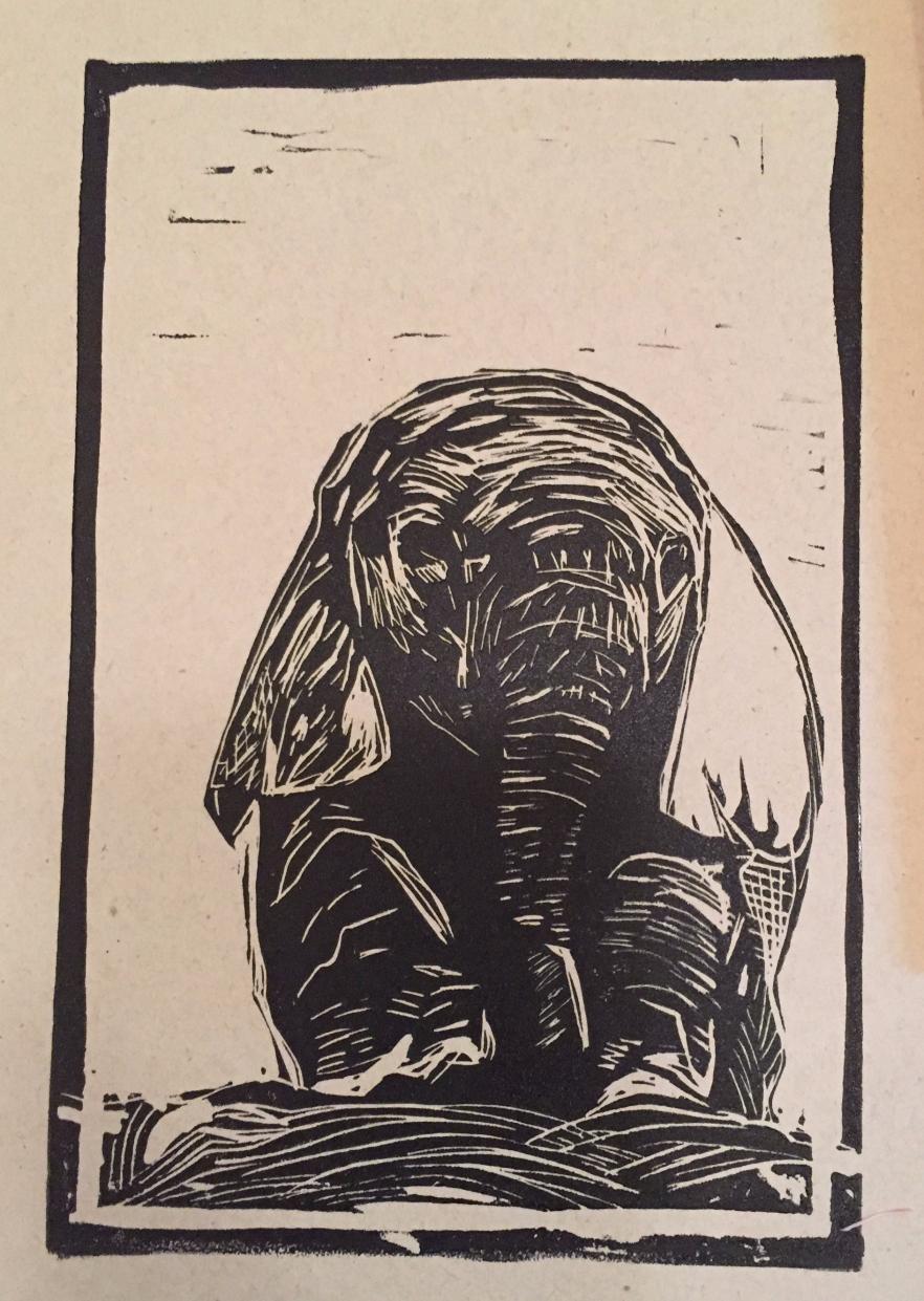 Baby Elephant Waits